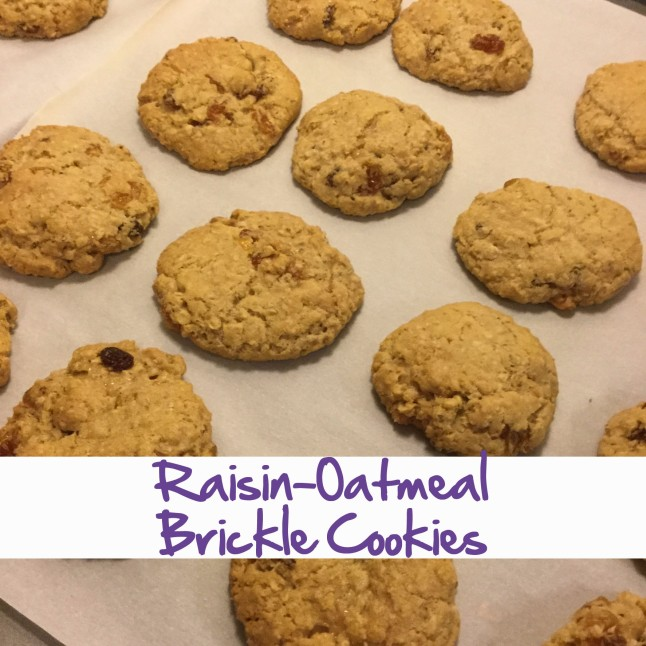 raisin-oatmeal-brickle-cookies